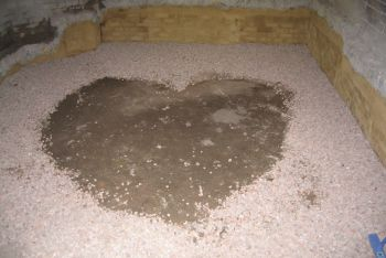 Underpinning Subfloor Extension with a loving touch